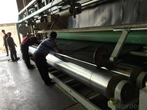 Geomembranes Type and HDPE LDPE Material
