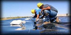 Linear Polyethylene Geomembrane for all Types of Decorative andArchitectural Ponds