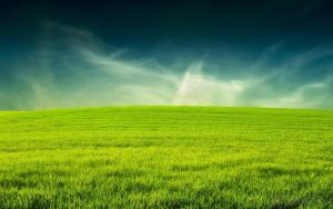 Environment greening artificial grass turf