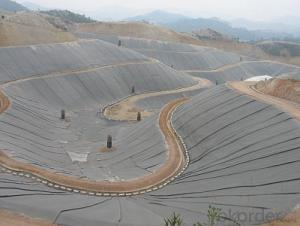 Geomembrane for Fish Farm Pond Liner for Sale