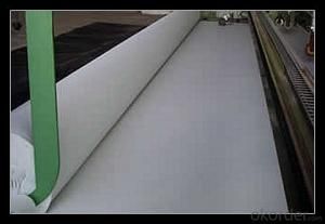 Polypropylene Non-woven  Geotextile Roll with High-Performance