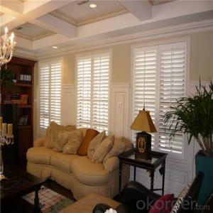 Wholesale Cheap Custom Clear Rigid Outdoor  Vertical PVC Blinds