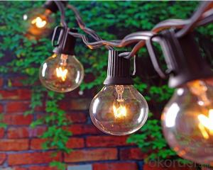 25ct G40 Globe Patio String light UL Listed