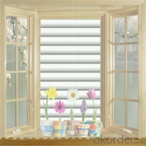 Sunscreen Roller Blinds Curtain With Photo Print
