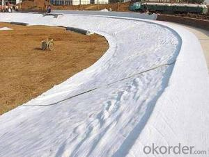 PET Non-woven Geotextile of Earthwork Products