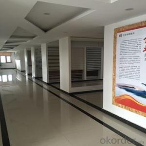 Bintronic window curtains design remote controlled blinds