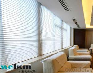 Window Blind, Roller Blind Curtain from China Factory