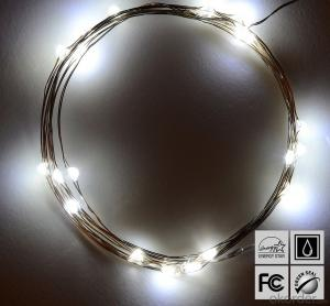 Cold White Copper Wire Outdoor Led String Christmas Lights with Remote Control and Power Supply