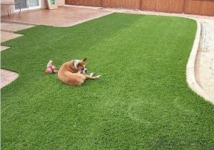 Nature artificial grass for pet or garden