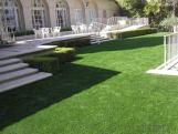 -- Decorating and greening artificial grass
