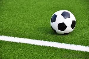 Artificial Grass of Football/ Soccor Field/ Best Sell in China