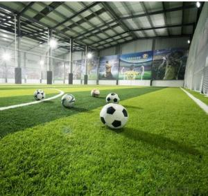 Soccer/Footbal Sport Flooring Plastic Floor Artificial Grass