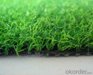 Artificial/Synthetic Grass with Classic Fb