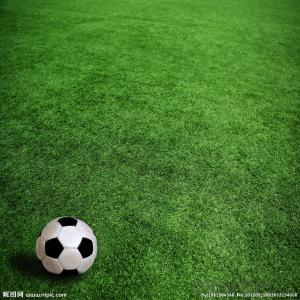 Artificial Grass China Manufacture Wholesale Price Football/Soccer
