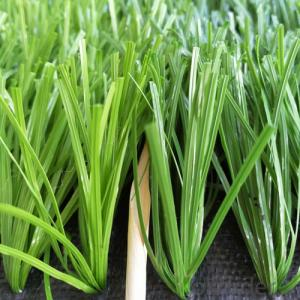 Artificial Grass  for Pet  Environmental Hot & Best Sell in China