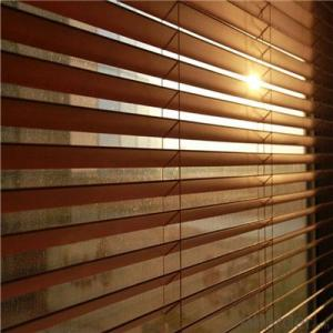 Thiccontinuous curtain fabrickened Korean Soft Gauze Shutter Curtain Double Blackout Blinds