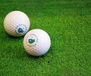 15mm High Density Golf Field Artificial Grass
