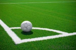 Artificial grass Football Grass sport court in school
