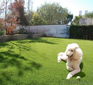 Artificial football grass beautiful and low price