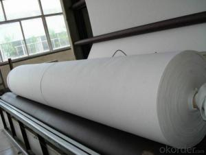 500g Nonwoven Geotextile Fabric from China Company