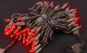 Wide Angle 5mm LED Battery String Lights Christmas Light