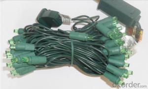 5mm Wide-Angle 50 Blue LED String / Green wire