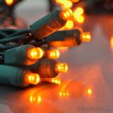Christmas Led Waterproof Outdoor Lighting String