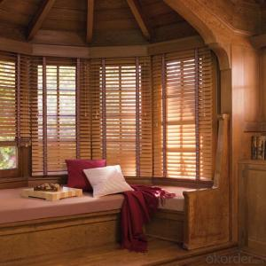 Environmental protection and energy saving electric blinds