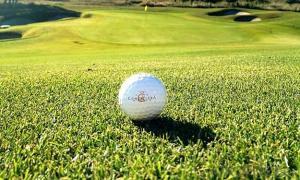 Dark green Mini Golf Turf Synthetic Grass