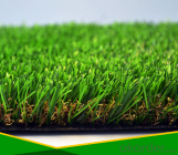 Multifunctional Sport  Artificial Grass for Non-Infilled