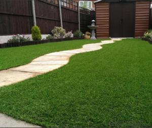 Artificial Grass for Backyard Garden Decoration Without Heavy Metals from CNBM