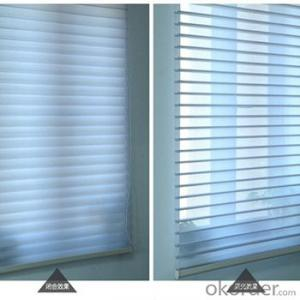 Fashionable zebra roller curtain/ Blinds manufacturer Gold Supplier