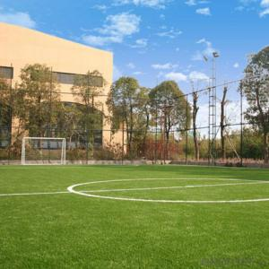Artificial Grass for Soccer with CE from CNBM