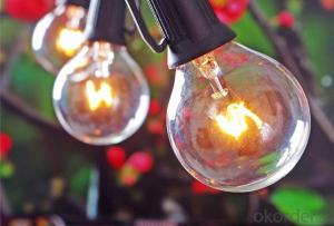 Outdoor Light String Globe Patio String Lights - Light Strings w/ Clear G40 bulbs UL Edison Lights