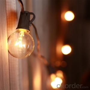 Globe String Lights with G40 Bulbs UL Listed with 25 G40 Bulbs Werproof End to End