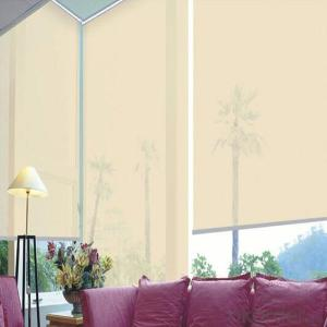 Customized Blackout Blind Sunscreen Blind Shutter Curtain