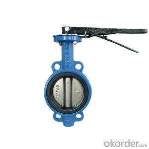 Concentric Butterfly Valve Heavy-Duty Resilient Seated