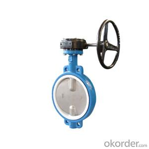 Worm Gear Butterfly Valve Wafer Type