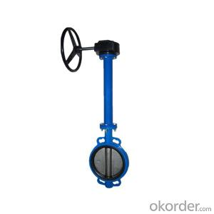 Extension Rod Butterfly Valve with Extension Spindle