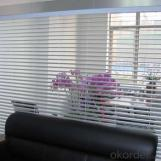 Waterproof Roller Blinds for Window with Low Price