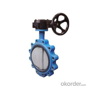 Lug Type Butterfly Valve Gear Operated DN250