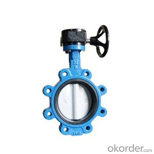 PN16 Lug Butterfly Valve Cast Iron Gear Type