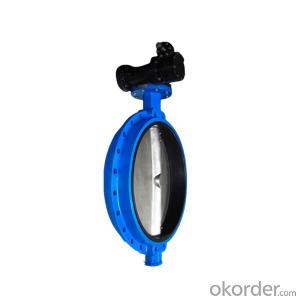 Single Flange Butterfly Valve With Worm Gear