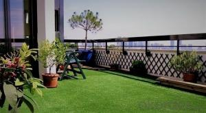 --Artificial Grass for Viewing and Ornament