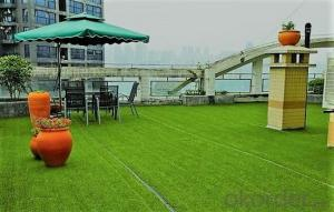 --Multi-function Leisure class artificial grass