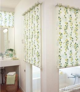 Roller Waterproof Curtain of Roman Style