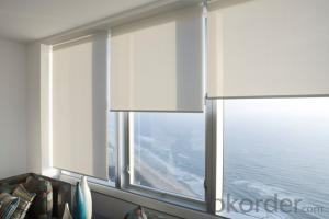 double sided  roller blind with waterproof somfy and motorized