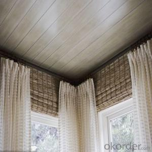 Window Blinds Double Deck with Fine Lace for Living Room
