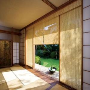 Bamboo Blinds Outdoor Vertical Roller Blinds for Home Decoration