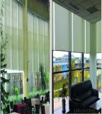 Window curtains spring roller blinds shutter